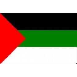Filistin Devlet Bayrakları